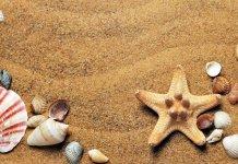 morze wakacje LTE