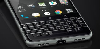 blackberry, jeżynka