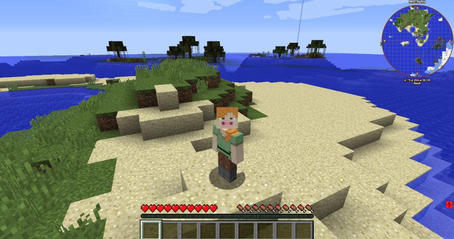 Minecraft świanska twarz