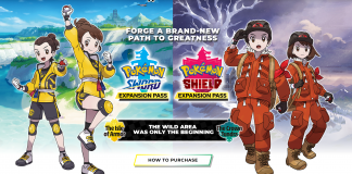 pokemon sword & shield, the isle of armor, the crown tundra, nintendo, pokemon home, pokemon go,