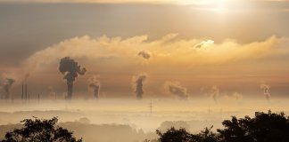 smog oczyszczacze powietrza